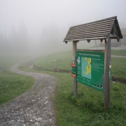 02Glaubenbergpassmoorlandschaft