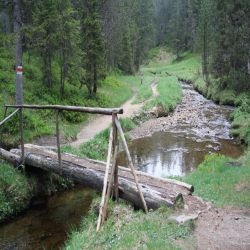 04Glaubenbergpassmoorlandschaft