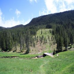 12Glaubenbergpassmoorlandschaft