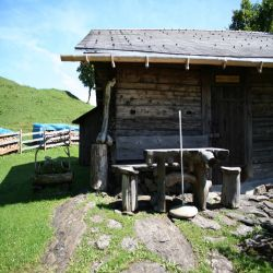 06Rosenlauikaltenbrunnenhochmoor