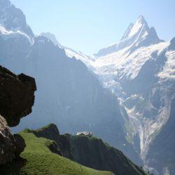 01Jungfraureggrindelwaldfirstgrscheidegg