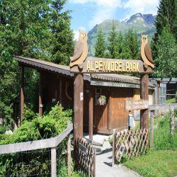 06Jungfraureggrindelwaldgrscheidegg